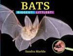 SandraMarkleBatsBook